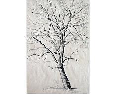 Kresba – Stromy\